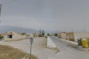 Detenido un joven de Vícar por cultivar 190 plantas de marinuana en una vivienda de El Ejido