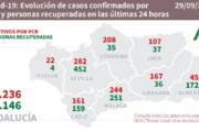 Coronavirus en Andalucía: cifras del martes