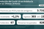 Coronavirus en Andalucía: informe del martes