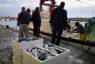 La lonja de Almería exportó menos de cuatro toneladas de pescado el pasado año
