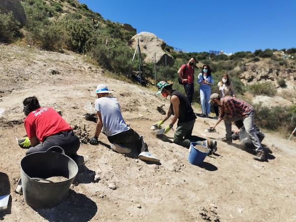 Trabajos Arqueologos