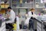 Convocadas ayudas por valor de 10,5 millones para contratar a jóvenes investigadores